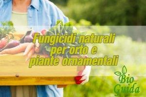 Fungicida naturale per l'orto
