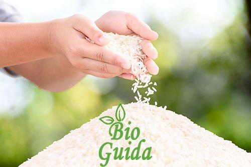 Amido di riso proprietà usi