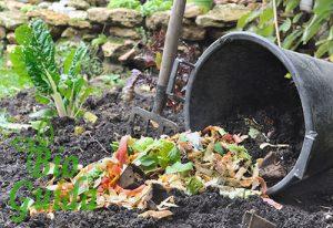 compostaggio domenico