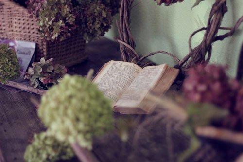 Migliori libri sui rimedi naturali