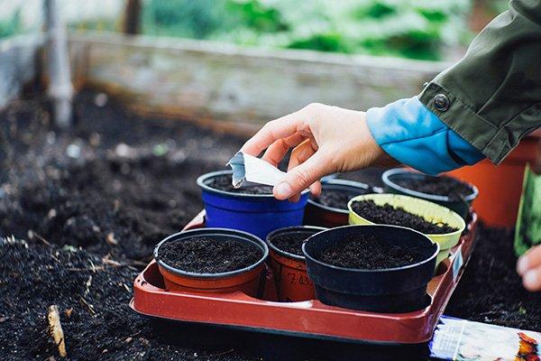 Preparazione del letto di semina